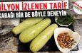 Yoğurtlu kabak salatası – Yoğurtlu kabak salatası nasıl yapılır  – Yoğurtlu kabak salatası tarifi